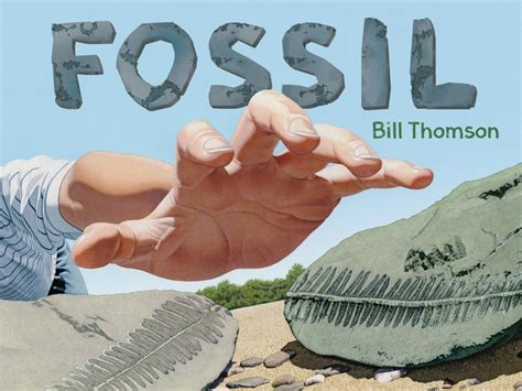 chalk wordless picture book the amazing fossil book giveaway growing with science