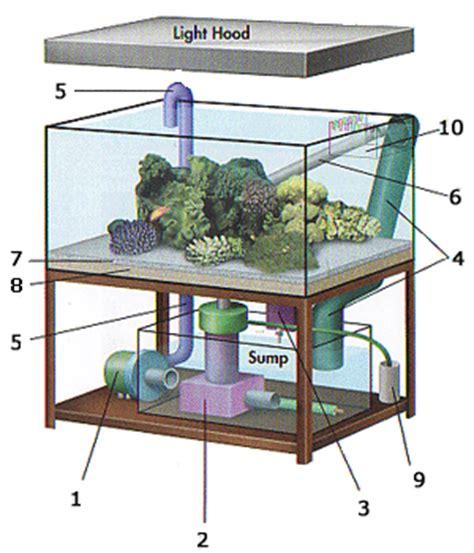 cara membuat filter aquarium simpel creativedesign materials to make saltwater aquarium