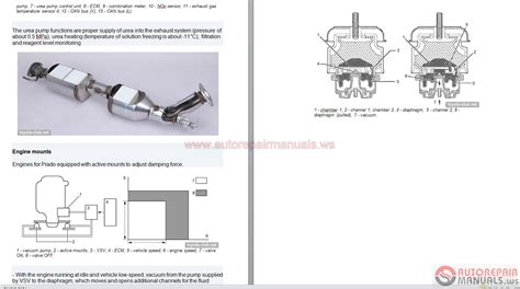 small engine repair manuals free download 2012 scion xd parking system 2012 scion xb wiring diagram free download diagrams wiring diagram elsalvadorla