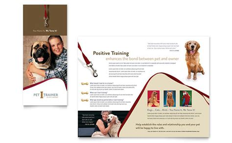 pet training dog walking brochure template design