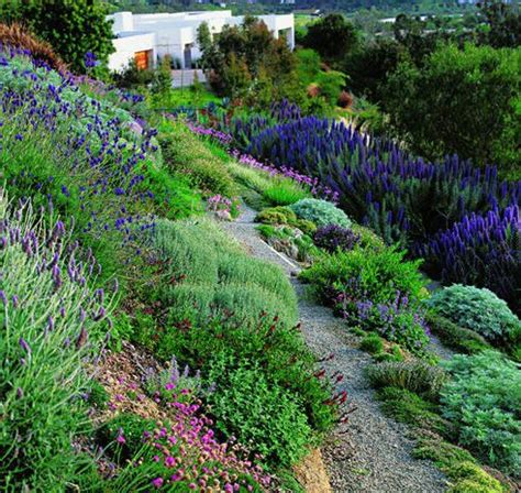 hillside garden ideas 25 best ideas about hillside landscaping on