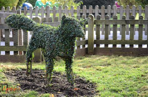 animal topiaries for sale the world s catalog of ideas