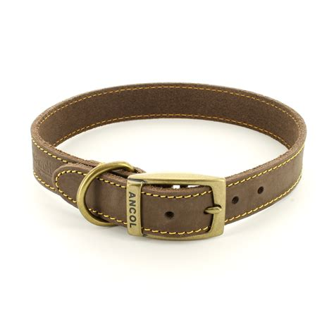 pet collar timberwolf leather collar by ancol pet runway