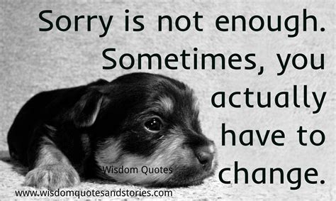 puppy not enough sometimes sorry is not enough wisdom quotes stories