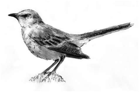 to kill a mockingbird mad symbols to kill a mockingbird