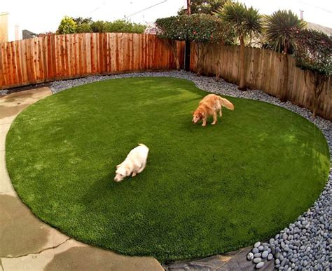 How To Clean Your Backyard Artificial Or Synthetic Grass For Dog Run Areas