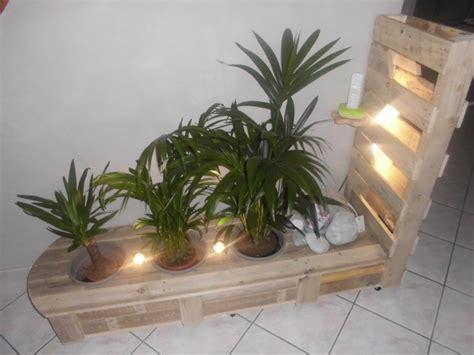 Ideas Con Palets #4: Plantas-mubles-luces-interior.jpg