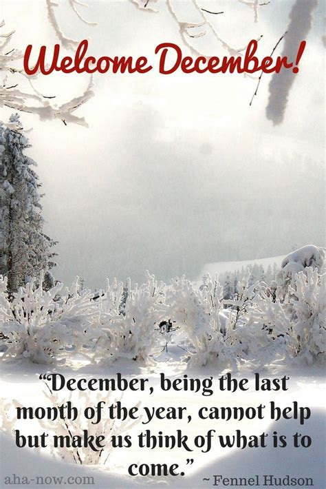 literary thoughts december 2010 33652 best timeless literary quotes images on literary quotes personal growth