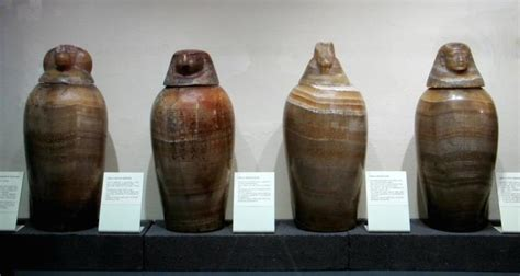 i vasi canopi trieste la collezione egizia civico museo di storia
