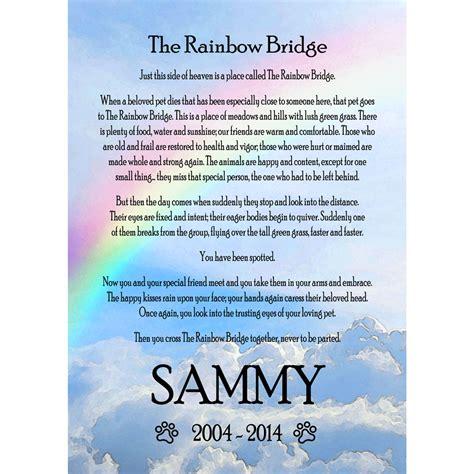 rainbow bridge frame  cats