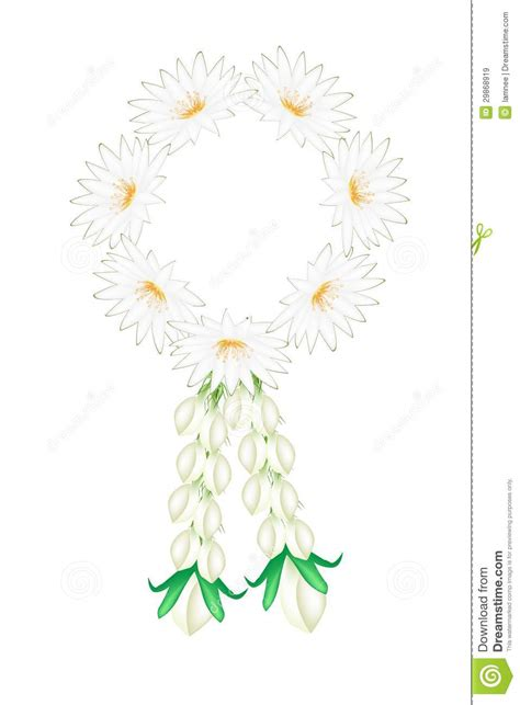 o bianco fiore fiori freschi gelsomino con la ghirlanda dei fiori di