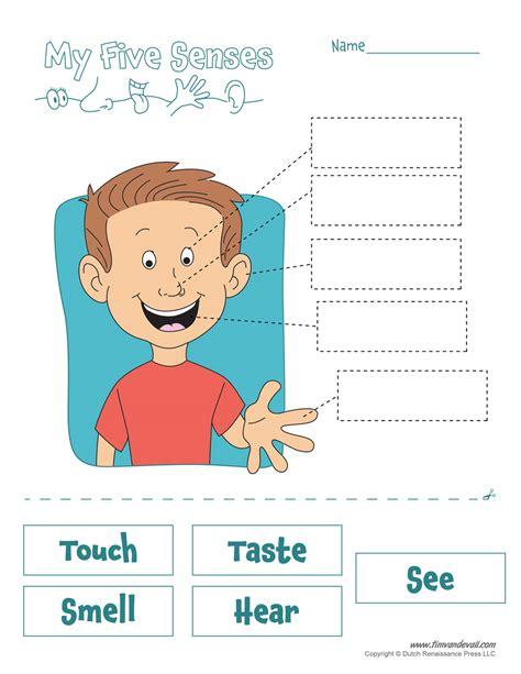 5 senses worksheets five senses worksheet tim s printables