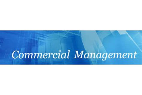 quantity surveying dissertation quantity surveying commercial management dissertation help