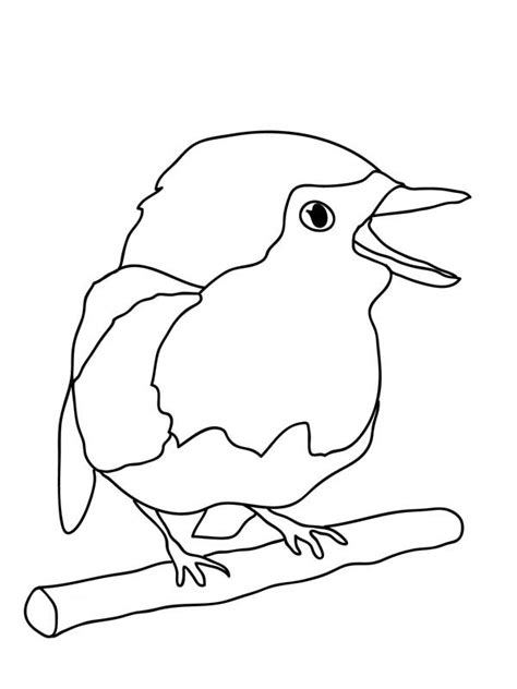 Baby Bird Coloring Page Kids Coloring Page Gallery Baby Bird Coloring Page