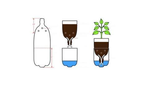 menanam hidroponik  botol bekas  tahapan