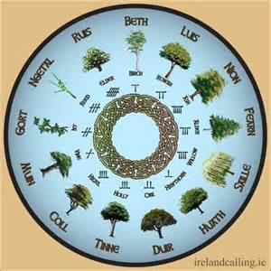 Celtic Tree Calendar Trees A Tree And December On