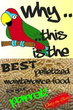 If you are not feeding your parrot this pelletized maintenance food