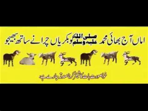 hazrat muhammad saw ki zindagi urdu vote no on a w 2017 imran aasi