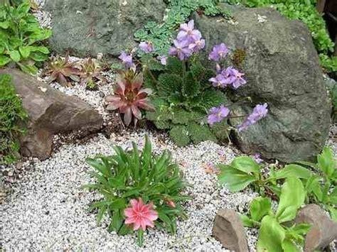 creare un giardino roccioso creare un giardino roccioso giardini orientali