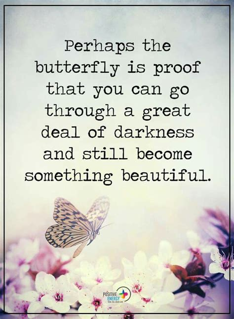 butterfly sayings 25 best butterfly quotes on definition of