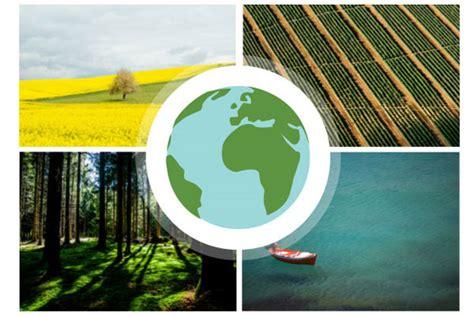 imagenes reales concepto protecci 243 n del medio ambiente para un desarrollo