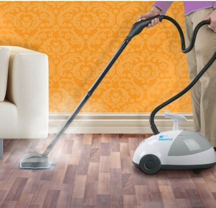 steam cleaner for bed bugs best steam cleaner for bed bugs a complete guide for 2017