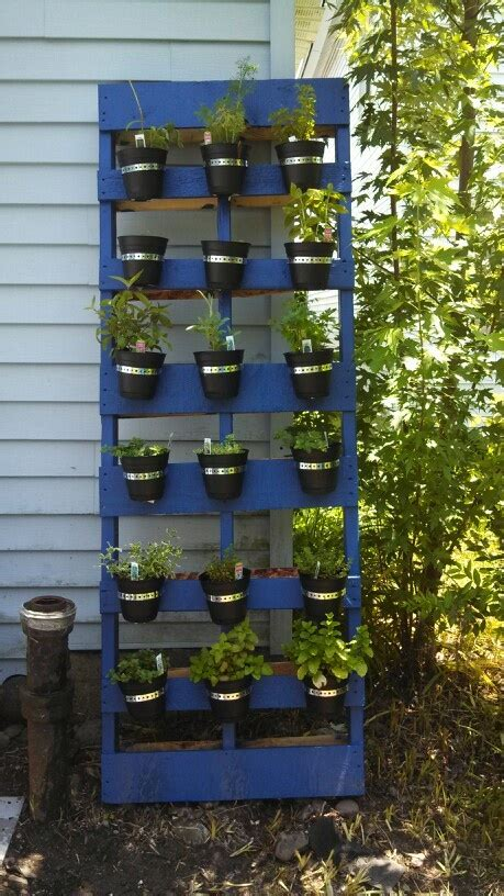 25 unique herb garden pallet ideas on pallet
