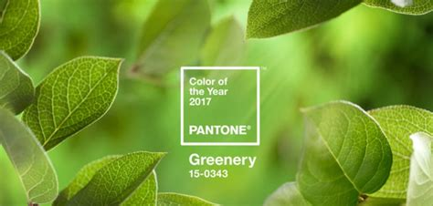 pantone color of the year 2017 rgb pantone color of the year 2017 greenery 220 berwell