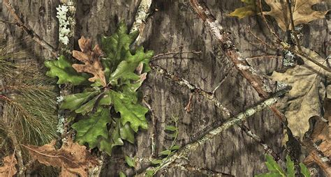 mossy oak mossy oak obsession pattern is now official camo of nwtf