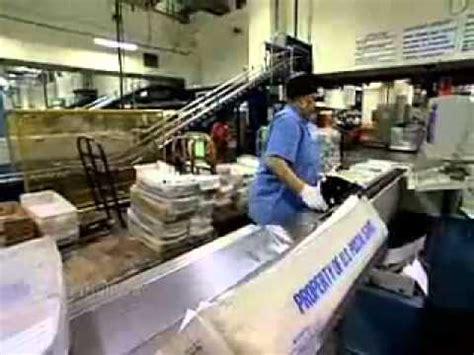 mail processing clerks description