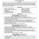 information security resume sle information security