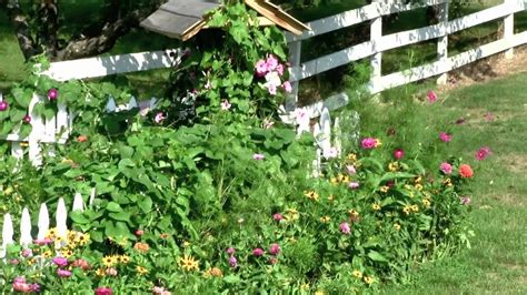 how to plant a flower garden how to easily plant flower seed for a beautiful garden