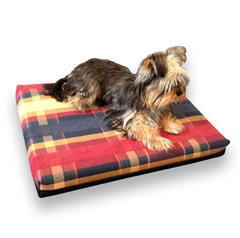 do dogs memory the benefits of memory foam beds
