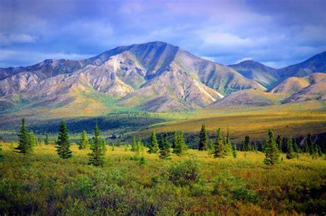 Phone Lookup Alaska 1st Alaska Tours Travel Agency In Fairbanks Alaska Ak Usa Yellow Pages Usa