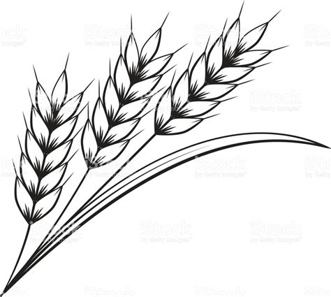 clipart graphics wheat clipart graphic pencil and in color wheat clipart