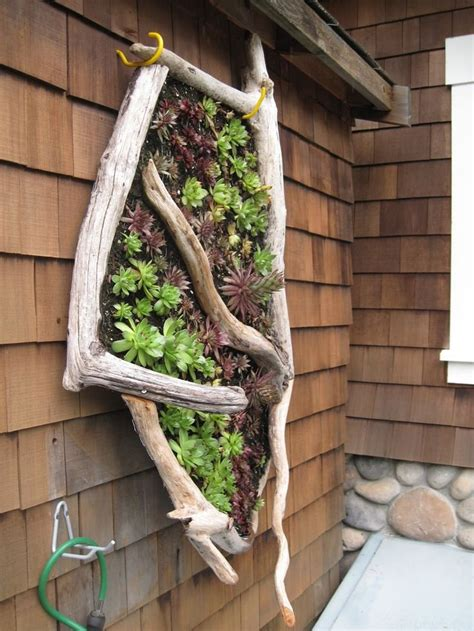 Driftwood Decors With Plants Small Garden Ideas Garden Wall Hanging