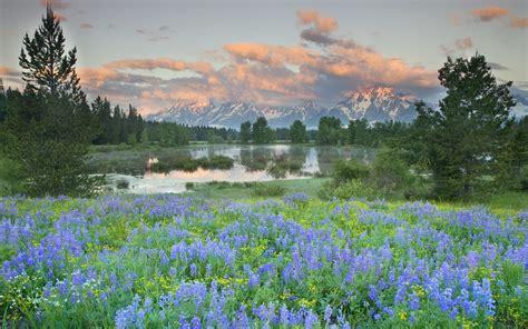 grand teton national park wyoming landscapes wallpaper