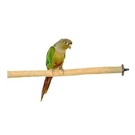 birds love small bottlebrush wood bird cage perch bird