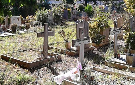 cimitero prima porta come trovare un defunto quot oddio no non 232 possibile questo 232 troppo quot choc al