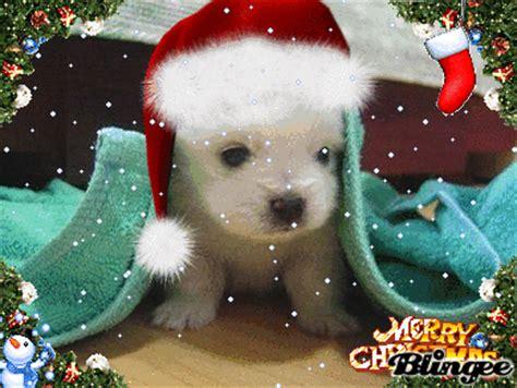 imagenes de navidad animadas tiernas en navidad azta lo tierno ez maz tierno fotograf 237 a