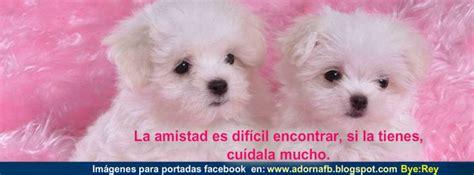 imagenes sentimentales para facebook imagenes para portada de facebook bonitas biografias