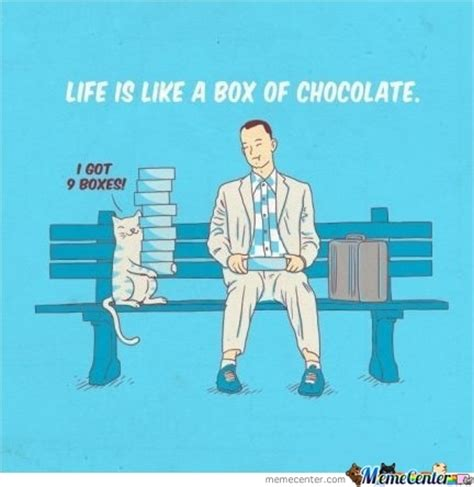 life    box  chocolate  labkitty meme center