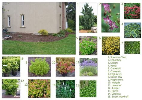 Landscape Design Ideas Front Of House by Front Of House Landscaping Ideas Theydesign Net Theydesign Net