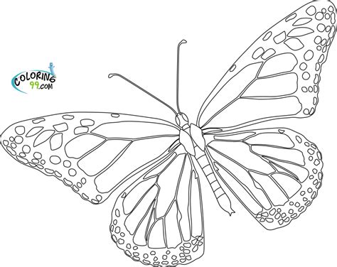 butterfly outline printable az coloring pages
