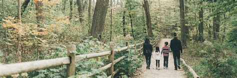 ravines natural parklands city  toronto