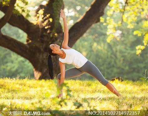 imagenes yoga naturaleza 公园在锻炼身体的美女摄影高清图片 大图网设计素材下载
