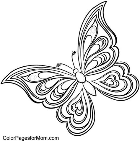 free coloring pages of butterfly adult