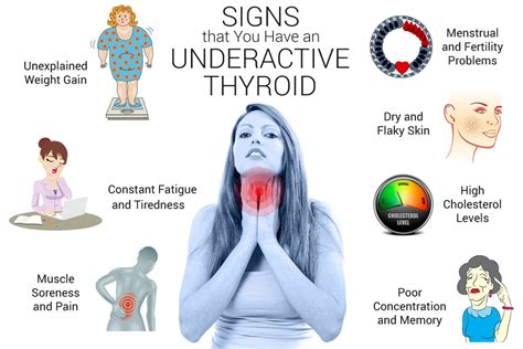 weight loss underactive thyroid thyroid the walking encyclopedia