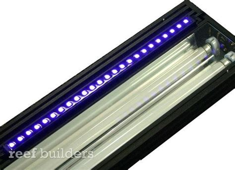 stunner led lights from ecoxotic news reef builders