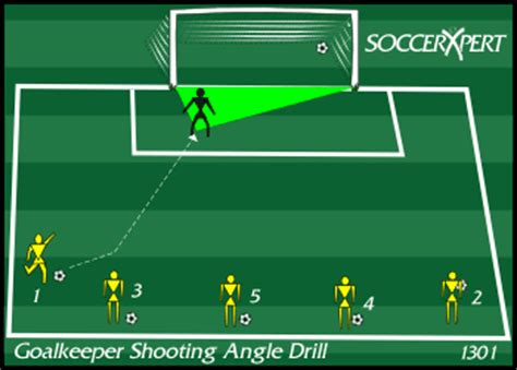 setting up drills clarke pdf goalkeeper shooting angle footwork quickness